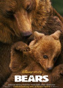 دانلود مستند Bears 2015